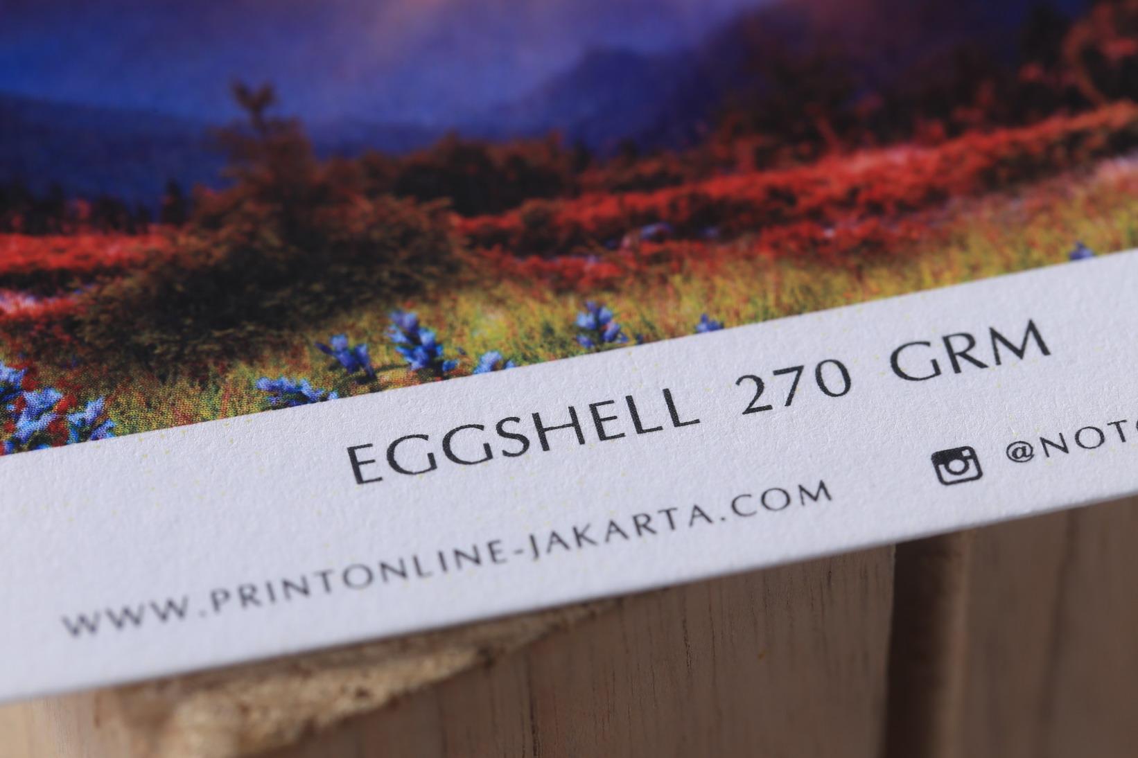 Eggshell  270 grm